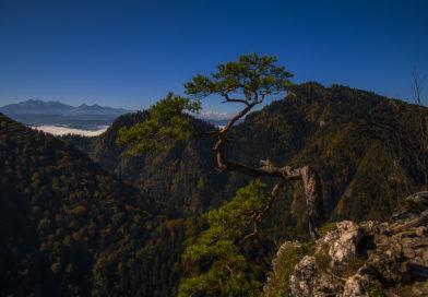 Sokolica, najpiękniejszy szczyt w Pieninach