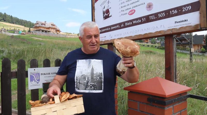 """Dariusz Loranty """"kosi"""" grzyby w Pieninach i beztrosko wypoczywa w """"Amonie"""" pod piramidą"""