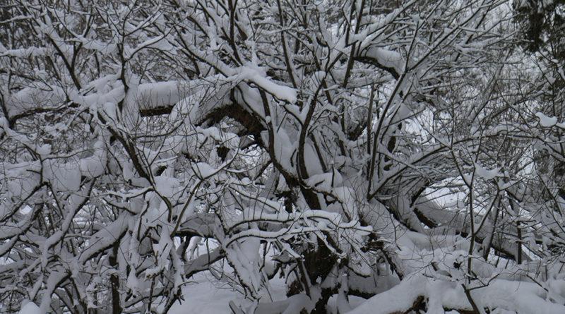 Atak zimy w Jaworkach. Syzyfowa praca z odśnieżaniem